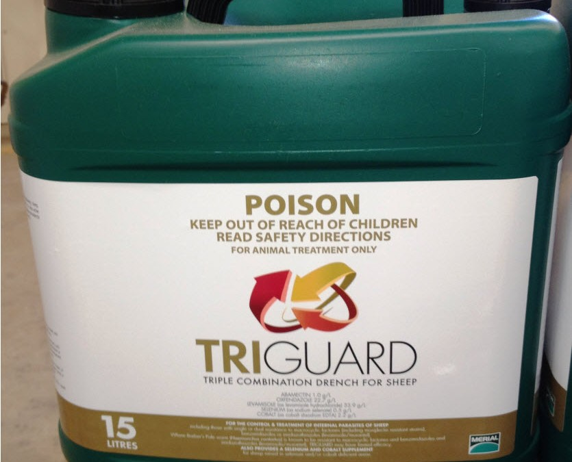 TRIGUARD Triple Combination Drench for Sheep