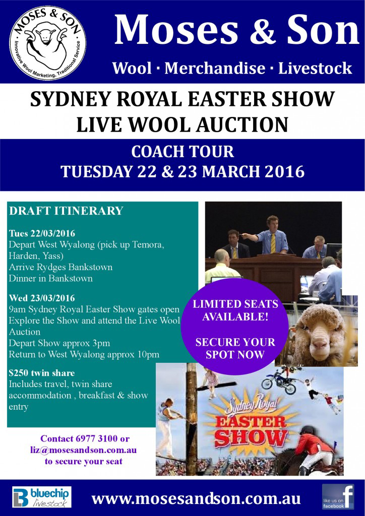 Easter-Show-724x1024