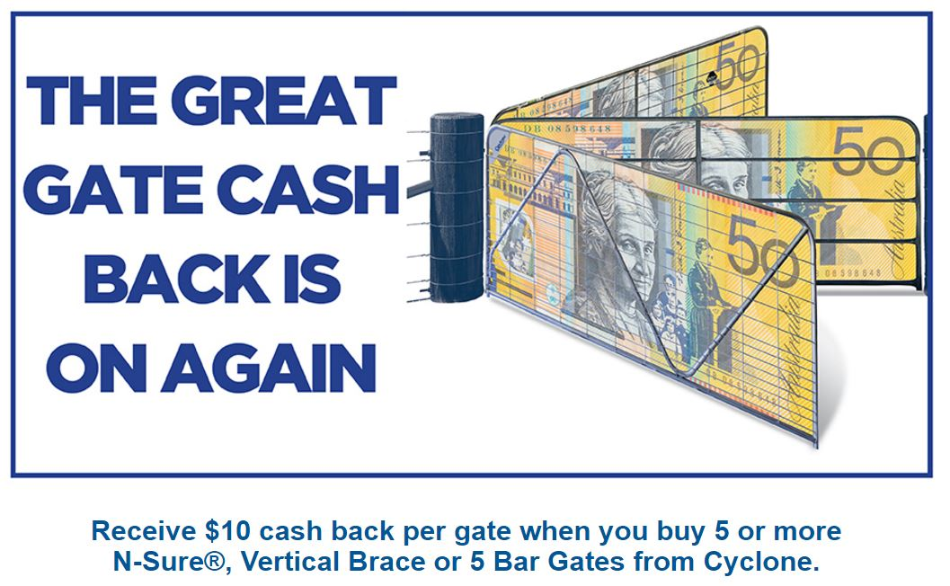 Cyclone Cash Back Offer