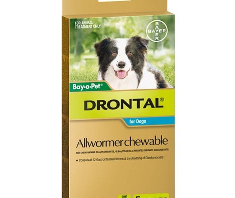 Drontal Allwormer For Dogs Medium